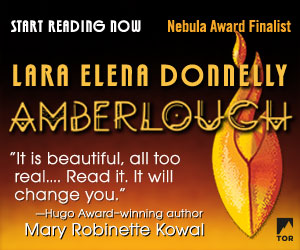 AMBERLOUGH by Lara Elena Donnelly