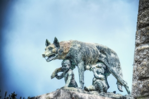 The She-Wolf's Hidden Grin