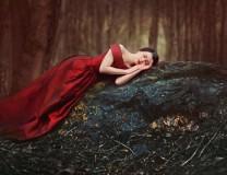 The Black Fairy's Curse